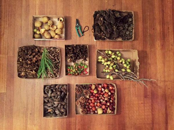 Staten Island Museum: Organic Ornaments Workshop