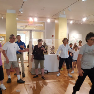 Staten Island Museum: Intro to Tai Chi