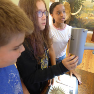 Staten Island Museum: Super Science - Clues to the Distant Past