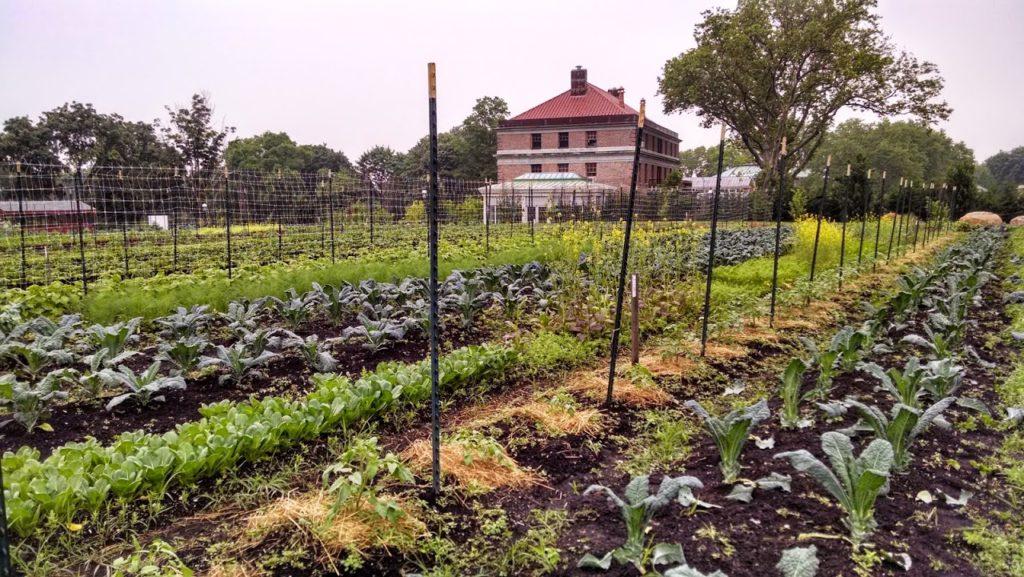 Heritage Farm Snug Harbor Cultural Center Botanical Garden