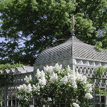 HomePage_Icons_White Garden