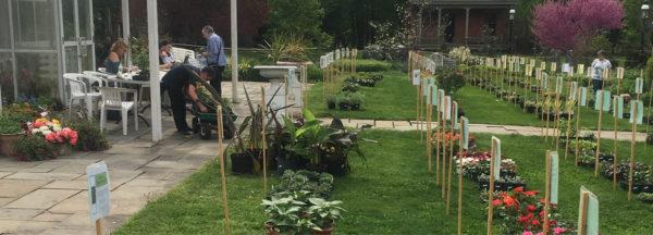Plant Sale: General Admission
