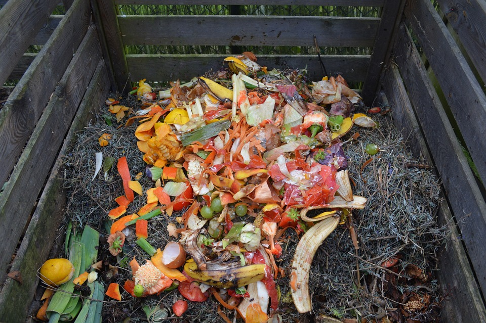Staten Island Children's Museum: Lasagna Composting