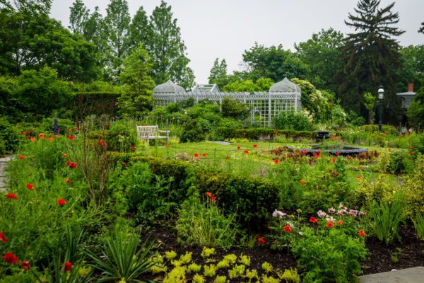 Snug Harbor Garden Tours: White Garden and Herb Garden
