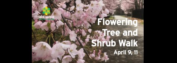 POSTPONED: Flowering Tree and Shrub Walk